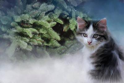 Kitten Photograph - Let's Decorate by Jai Johnson