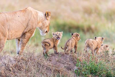 Savannah Photograph - Let's Go Mom by Ted Taylor