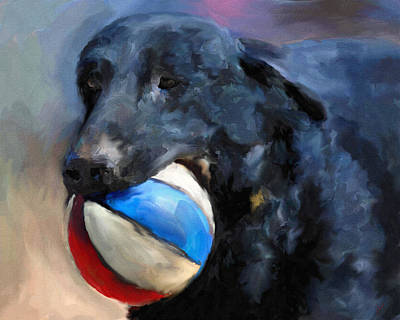 Dog Playing Ball Painting - Let's Play by Jai Johnson