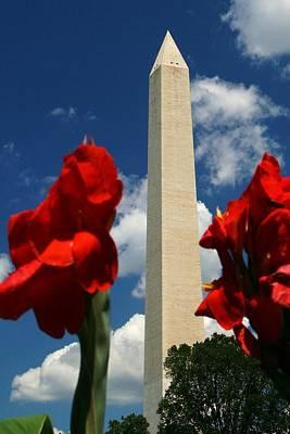 George Washington Photograph - Liberty by Mitch Cat