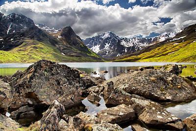 Lichen Photograph - Lichen View by Ed Boudreau