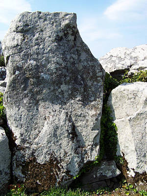 Megalith Photograph - Life At Creevykeel Court Cairn Sligo Ireland by Teresa Mucha