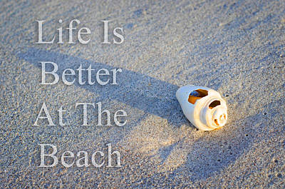 Life Is Better At The Beach - Sharon Cummings Print by Sharon Cummings