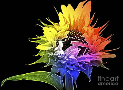 Sunflowers Digital Art - Life Is Like A Rainbow ... by Gwyn Newcombe