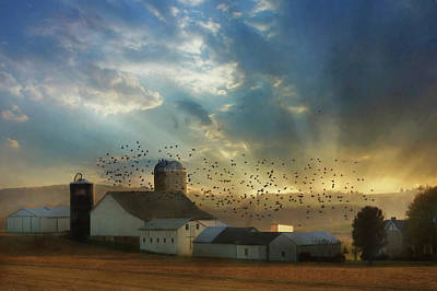 Photograph - Light Of A New Day by Lori Deiter