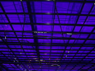 Photograph - Lighted Ceiling by Ashok Patel