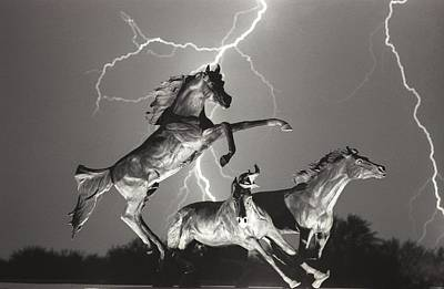 Weather Photograph - Lightning At Horse World by James BO  Insogna