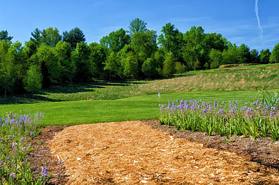 Golf Photograph - Spanish Bluebell Path by Claire Turner