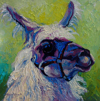 Wool Painting - Lilloet - Llama by Marion Rose