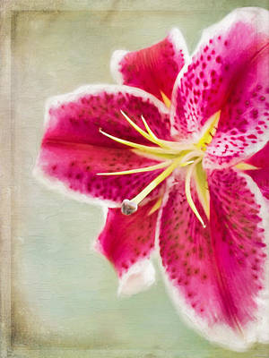Delicate Details Painting - Lily Art - No Mistakes by Jordan Blackstone