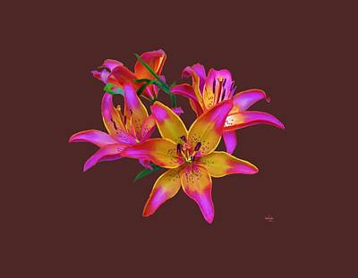 Nature Painting - Lily Flowers Pink Maroon by Susanna  Katherine