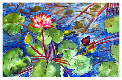 Waterlily Drawing - Lilypond by Siona Koubek