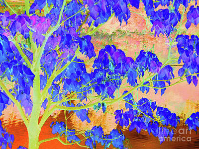 Digital Art - Lime Tree Sunrise by Ann Johndro-Collins