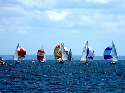 Sailboats Photograph - Line Up by Kendall Eutemey