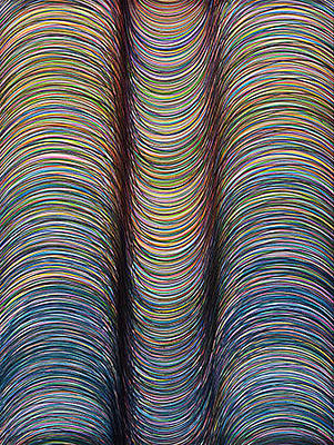 Curvilinear Painting - Lineas No.5 by George Sanen