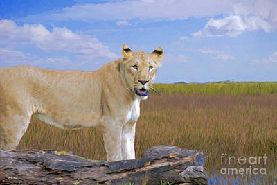 Lion In The Grasslands Print by Judy Kay