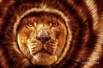 Lion Lady   -1 Print by Prar Kulasekara