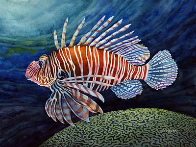Tropical Fish Painting - Lionfish by Hailey E Herrera