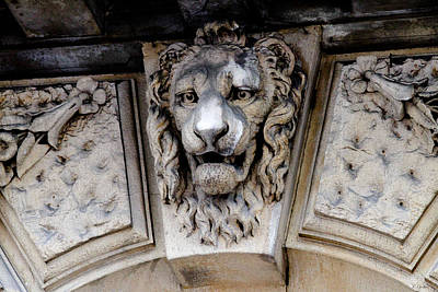 Lions Head Print by Tony Grider