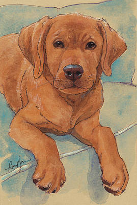 Little Big Red Dog Print by Tracie Thompson