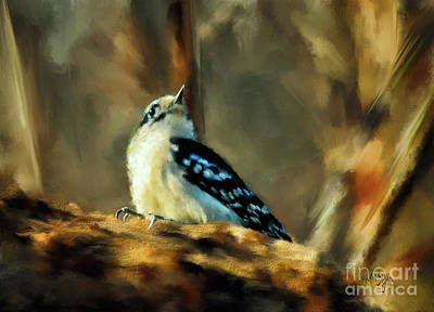 Little Downy Woodpecker In The Woods Print by Lois Bryan