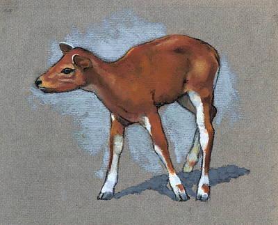 Pastel - Little Fawn Animal In Pastel by Joyce Geleynse