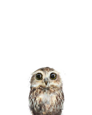 Babies Mixed Media - Little Owl by Amy Hamilton