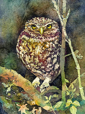 Contemplative Painting - Little Owl by Hailey E Herrera