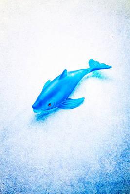 Goldfish Photograph - Little Rubber Fish by YoPedro