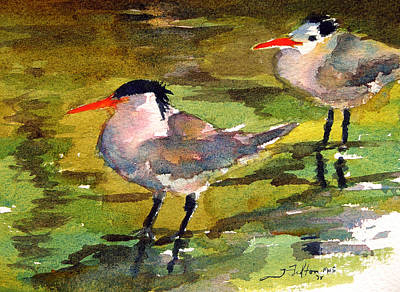 Painting - Little Terns by Julianne Felton