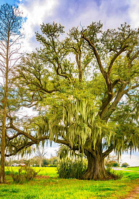 Oak Photograph - Live Oak And Spanish Moss 2 - Paint by Steve Harrington