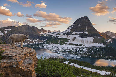 Glacier National Park Photograph - Living On The Edge by Joseph Rossbach