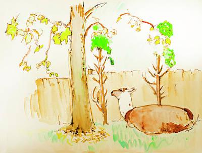 Llama Drawing - Llama Cedar Leaves Lunch by Rhonda Alexander
