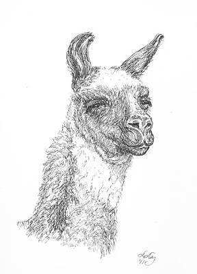 Llama Drawing - Llama by Deborah Dallinga