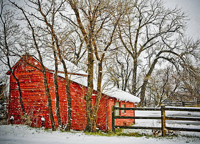 Barn Photograph - Loafing Shed by Marilyn Hunt