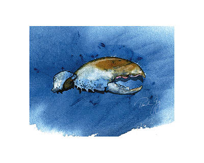 Lobster Claw Print by Paul Gaj