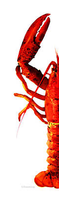 Lobster - The Left Side Print by Sharon Cummings