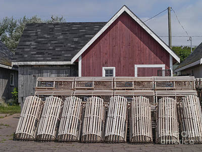 Lobster Traps Photograph - Lobster Traps Prince Edward Island by Edward Fielding