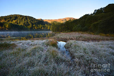 Tron Photograph - Loch Chon by Stephen Smith