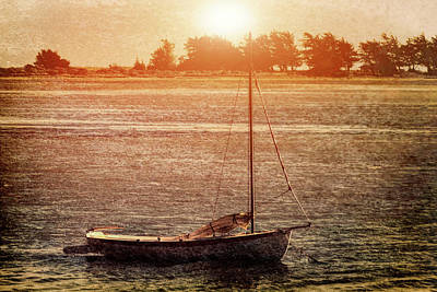 Lone Boat Print by Garry Gay
