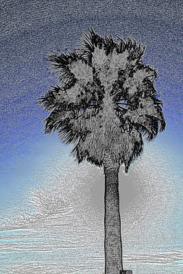Colored Pencil Abstract Photograph - lone Palm 2 by Gary Brandes