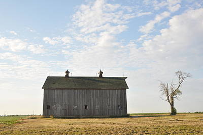 Lonely Barn Print by Daniel Ness