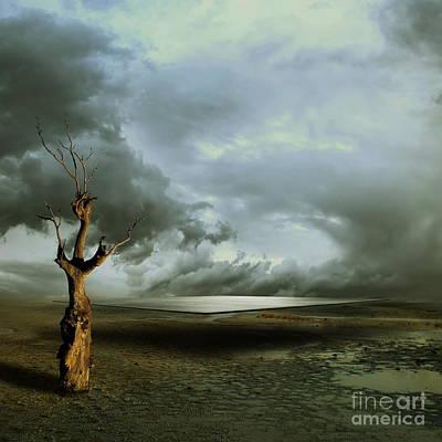 Desert Mixed Media - Lonely Death by Franziskus Pfleghart