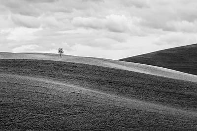 Lonesome Print by Ryan Manuel