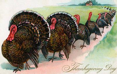Turkey Drawing - Long Line Of Thanksgiving Turkeys by American School