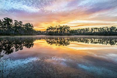 Color Photograph - Long Pine Colors by Jon Glaser