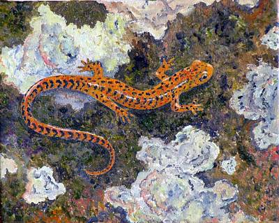 Salamanders Painting - Long Tailed Salamander by Elaine Oehmich
