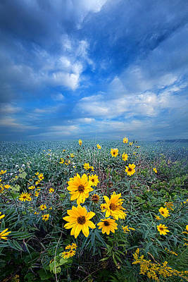 Looking For Space Print by Phil Koch