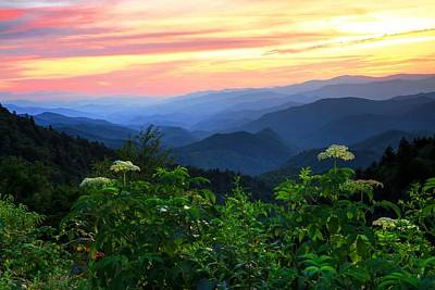 Great Smoky Mountain National Park Photograph - Looking Out Over Woolyback On The Blue Ridge Parkway  by Carol R Montoya