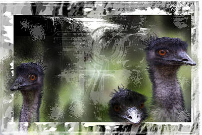 Emu Digital Art - Looking Out by Sue Masterson